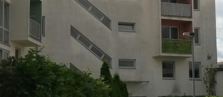 Odstranění plísní a dezinfekce fasády Brno