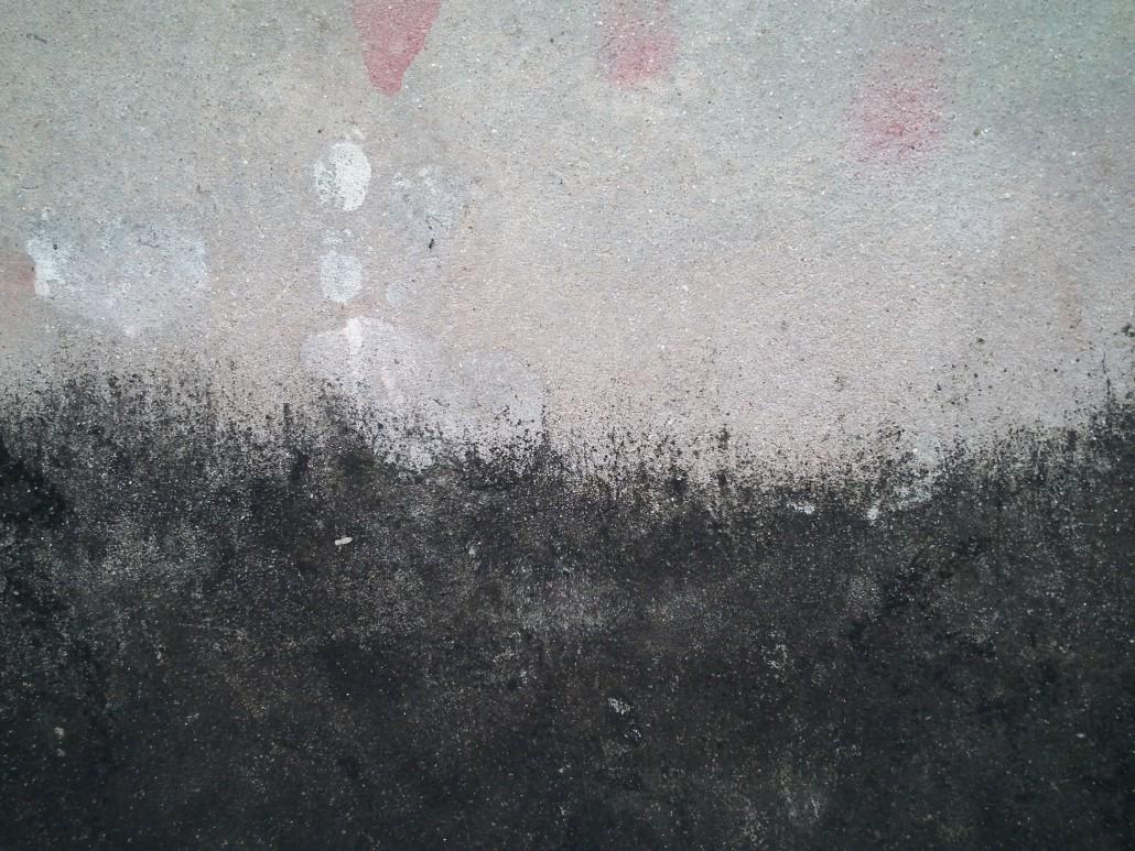Odstranění plísní a vlhkosti na studené stěně